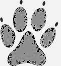 Hundepfoten-klein grau